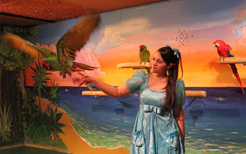 Parrot Show, Mundomar