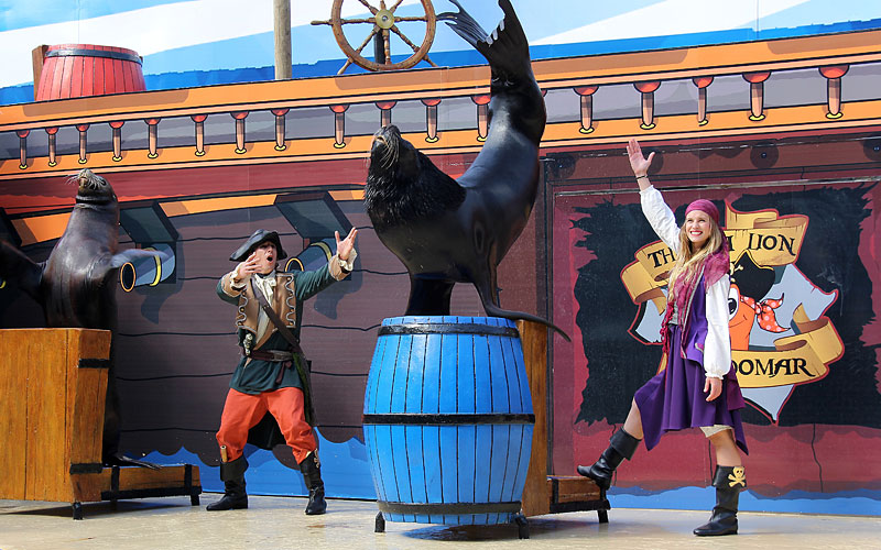 Sea Lion Show Mundomar